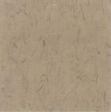 pisos-vinilicos-all-new-regent-bio-1903