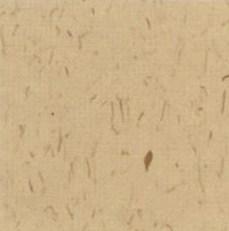 pisos-vinilicos-all-new-regent-bio-1904