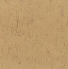 pisos-vinilicos-all-new-regent-bio-1906
