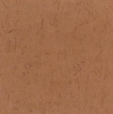 pisos-vinilicos-all-new-regent-bio-1911