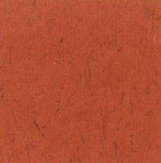 pisos-vinilicos-all-new-regent-bio-1913