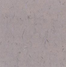 pisos-vinilicos-all-new-regent-bio-1917