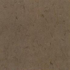 pisos-vinilicos-all-new-regent-bio-1921